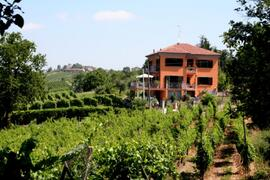 Property Photo: Villa in the vineyards