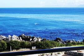 Property Photo: View of whales from the balcony