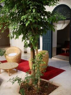 Riad Sara; Garden