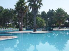 Resort Tropical Pool