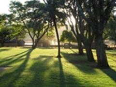 Property Photo: The garden