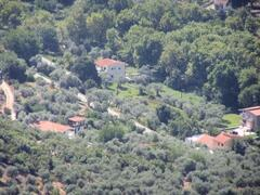 Property arial view