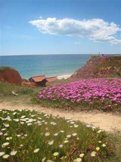 Praia da Falésia-Hotel Alfamar beach cliff views