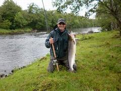 Salmon of 15 lbs