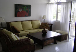 View of the living room furniture