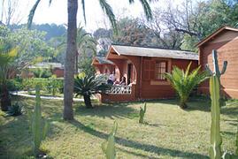 Property Photo: Soller Garden Bungalows