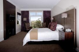 Property Photo: The Devon Valley Hotel room