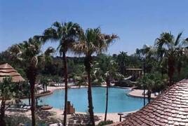 Disney Animal Kingdom Lodge pool