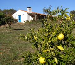 Property Photo: Outside Monte Medronheiro