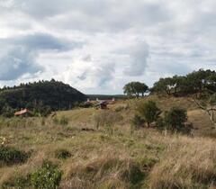 Monte do Vale Porquinhas