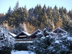 Die Kabine in winter