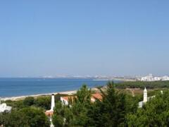 Property Photo: Terrace view