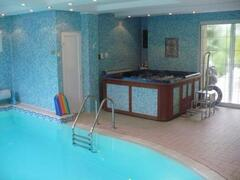 Property Photo: Indoor pool and jacuzzi