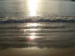 Morning walks on the beach..
