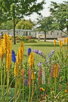 Patrington Haven Holiday Caravan Park VISIT http://www.PHLP.co.uk