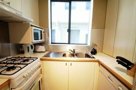 Modern, well-equipped kitchen with Euro laundry