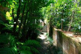 And more garden