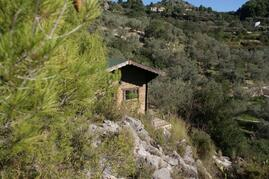 Property Photo: Casita de Montana perched on its mountainous outcrop with the olive grove behind