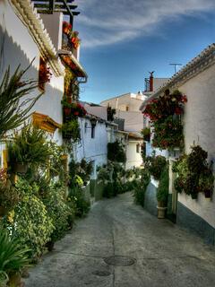 Street in Canillas de Aceituno