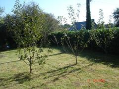 enclosed rear gardens