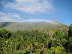 Rainbows from Lanai