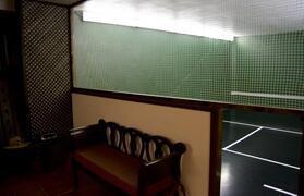 Interior hand ball field