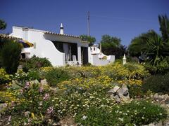 looking up to the Carob Cottage
