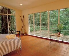 WAKE UP TO TRANQUIL RAINFOREST SETTING