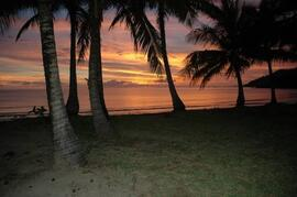 PALM FRINGED OAK BEACH REALLY IS A RARE TREAT