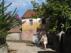 Late Summer Walk Through a Sleepy Village
