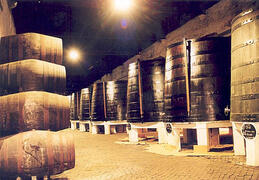 nearby - City of Porto, cellars of Port Wine