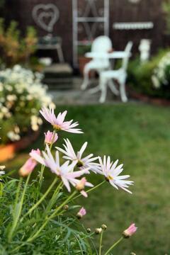 Private Garden Setting