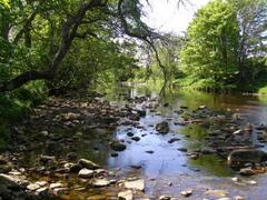 Property Photo: River running through Stanhope