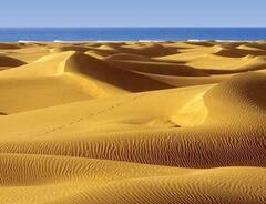 The Dunes of Maspalomas