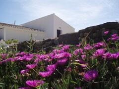Property Photo: Casa Colina