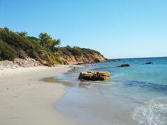 local beach.(foxi murdegu)