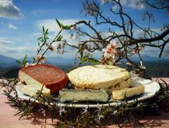 Cheese made by the neighbouring farm