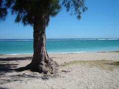 Property Photo: Beach