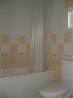 guest bathroom/shower