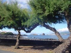 coastline views from casa da barca. flat terrain around Barca is ideal for cycling