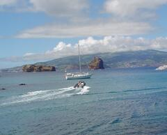 Madelena Port with several whale watching and boating excursions