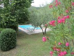 Property Photo: view from breakfast terrace of garden and private pool