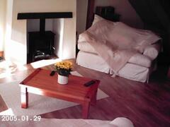 lounge - firplace