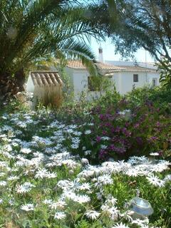 Property Photo: One of Monte Rosas garden views.