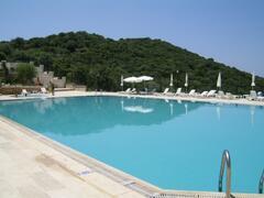 Property Photo: Pool: free use of sun-loungers & umbrellas