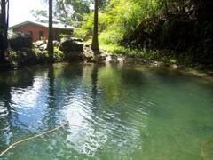 Mountain swimming hole & waterfall at your doorstep