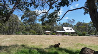 The homestead has lovely views from its peaceful, rural setting, kangaroos, abundant birdlife and wildflowers.