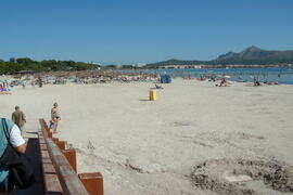 The Alcudia beach