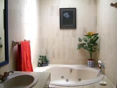Jacuzzi in Master Bathroom