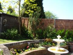 back garden to annex